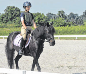 Open schooling days available for equestrians