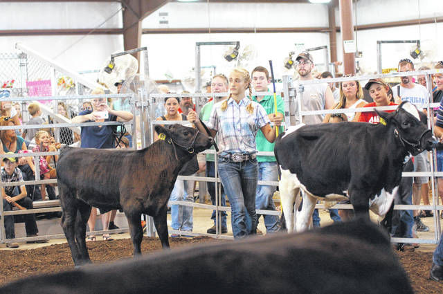 File photos Taylor Linebaugh, now 14, is no stranger to the Greene County Fair.