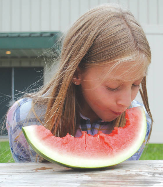 Whitney Vickers | Greene County News The watermelon eating competition at the Greene County Fair was held July 31. Participants had to sit with their hands behind their back and eat the juicy fruit down to the rind. Whoever could do so the fastest in their age category was declared the winner.